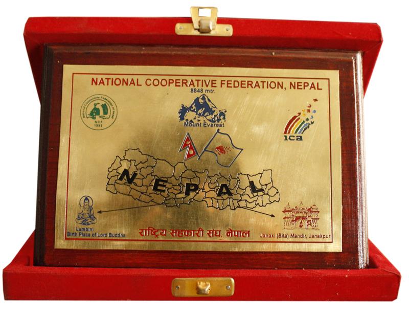 nation-cooperative-copy